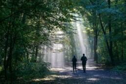 Laufen mit Heuschnupfen Hotspots vermeiden